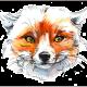 Foxtails's avatar