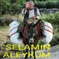 ayhan37