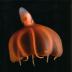 Drup's avatar