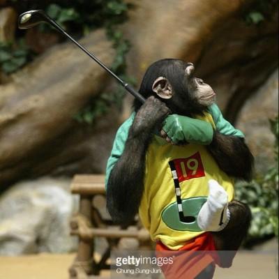 golfape