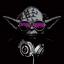 Yoda904