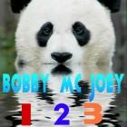 View BobbyMcJoey's Profile