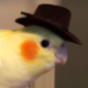 yusufyaser's avatar