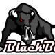 Black_bull