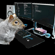 Squirrelcoding