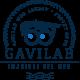 Gavilab