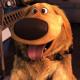wshill's avatar