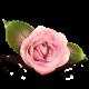61665dccb26cc5a4e60d54ffe72f7d0a?default=https%3a%2f%2f2015.battlehack.org%2fgravatar%2f2014