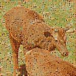 Azalea avatar