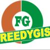 Freedygist