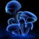 Tobias2289's avatar
