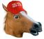 Intelligent horse