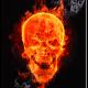 Ognjen023