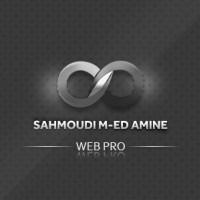 sahmoudi mohamed amine