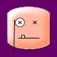 Profile picture of viji