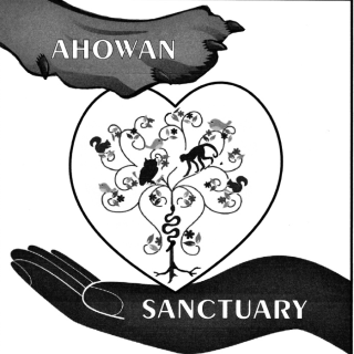 Ahowan ICrow