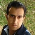 mohsengham