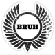 Bruhstice