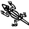 yanay's icon