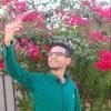 Avatar of Hesham Hammad