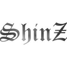 Avatar for shinznatkid from gravatar.com