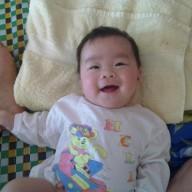 Ha Trinh
