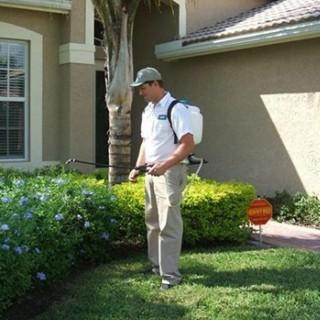 Memphis Pest Control Network