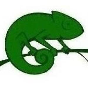 Miko Chameleon