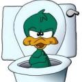 avatar of kbz