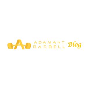 ADAM ANT BARBELL