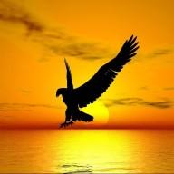 wingedfriend
