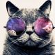 _The_Munchkin_'s avatar