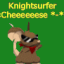 Knightsurfer