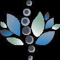 Avatar of livchiropracticcenter