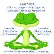 David Yasyit