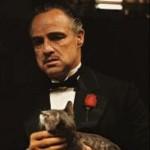 Alfonso Hermida avatar