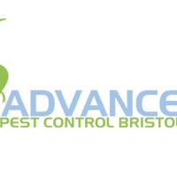 Advance Pest Control Bristol