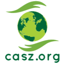 Avatar for casz from gravatar.com