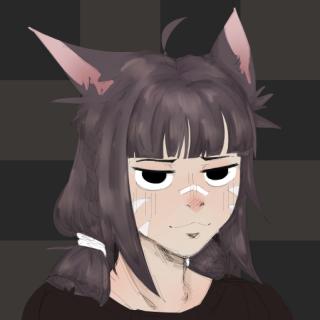 nitedasher