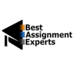 Best Assignment Experts