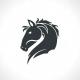 Financial Horse
