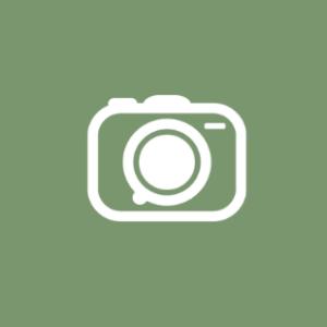 Timm Hojbjerg