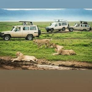 Foot Slopes Tours & Safaris