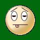 shiba angry gif