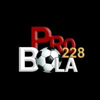 pro-bola228.com