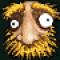 Avatar of rafael rossignol