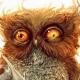 flipur's avatar