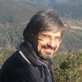 Francesc Prims