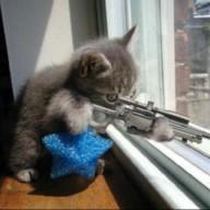 SniperFodder