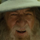 Gandalf The Wise